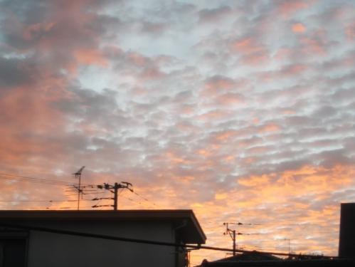朝の空、太陽の光 幸せを感じる 魂のコーチング