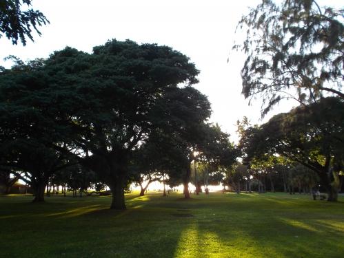 朝日 太陽 自然 魂のコーチング